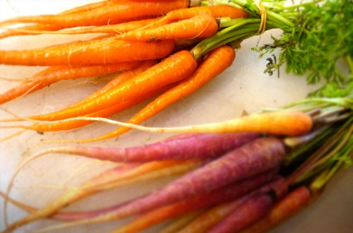 Fresh carrots for crispy carrot foam
