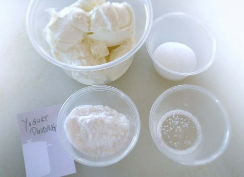 Mise-en-place for yogurt pudding