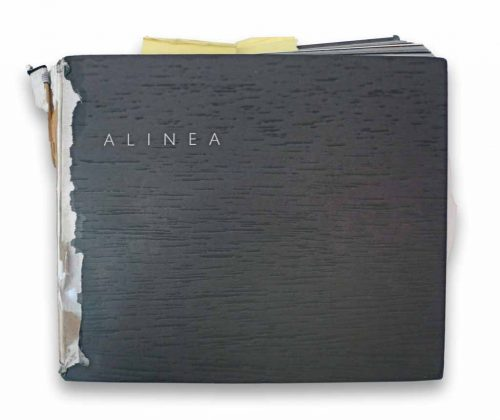 Alinea cookbook at 1 year